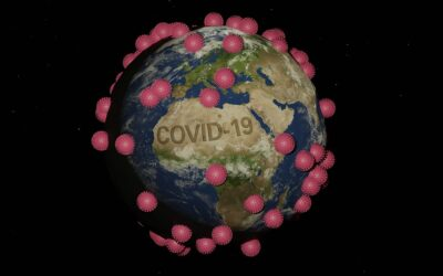 Covid-19 and Capitalism: 'Pandemics… have their roots in environmental change and ecosystem disturbances'